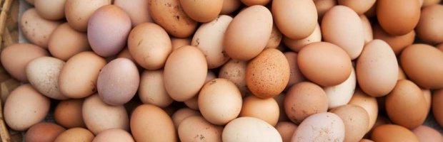 6 maneras de cocinar un huevo
